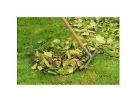 Garden clean up and weeding