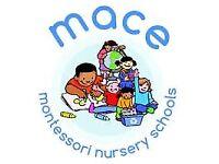 Level 3 Nursery Practitioner / Nursery Nurse