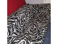 Zebra Print Sofa Bed