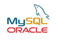 1to1 Introdution to Oracle/SQL or Oracle/XML or PL/SQL or MySQL/SQL or How to program computers