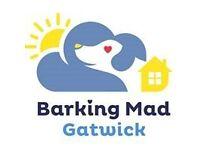 Established Dog Boarding Franchise Barking Mad Gatwick Area For Sale