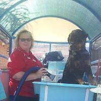Aussie Pooch Mobile Dog Wash - Southern Adelaide Area