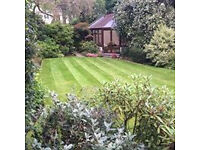 Cedar Gardening & Landscapes - All garden services available.