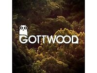 GOTTWOOD 2018 TICKET FOR SALE
