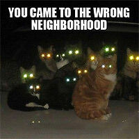 Hate your neighborhood? I'll get you out!