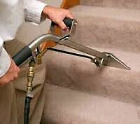 Carpet Steam Cleaning . Residential & Commercial