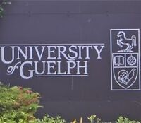 U of G Tutor: Accounting | Business | Finance | Math