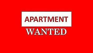 Clean couple LOOKING FOR an apartment :)