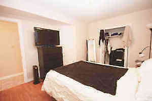 Beautiful Lower Level One Bedroom Apartment- Downtown Kingston Belleville Belleville Area image 3