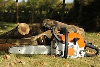 Discount prices 20% off tree removal all area's.