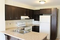 Bright End Unit Terrace Home in Orleans Avalon -Promotion price