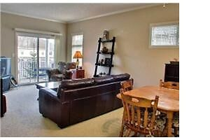 Fully furnished Summerside condo with all utilities
