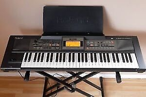Roland E-09 Arranger Keyboard with Pedal