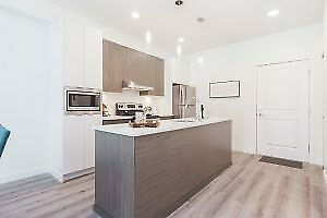 1 Bed for Rent Surrey/Guildford area, near King George Skytrain