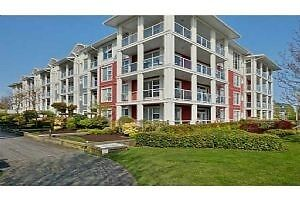 Richmond Steveston Homes Condos Townhouses