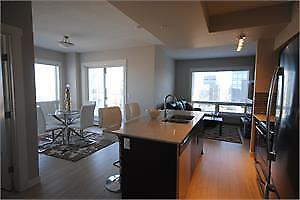 Fox 1, luxurious 2 bedroom condo in heart of downtown
