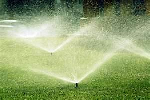 $29.99 Sprinkler Blowouts Call or text 306-241-2756