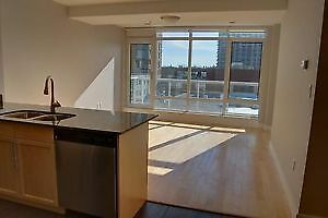 Executive condos UPtown&Downtown..Furnished & un furnished!! Kitchener / Waterloo Kitchener Area image 4