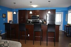 Modern 2 Bedroom - Close to Downtown - Pet Friendly - February 1