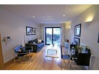 Great One Bedroom Modern Apartment In Highbury Near Highbury Fields & Many Transport Links