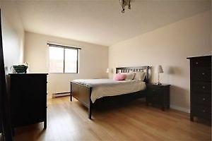 Grande chambre ensoleillée à louer
