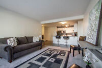 Beautiful New Condo with 4 Months Lease (Emerald Hills)