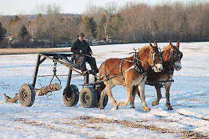 HORSE DRAWN - LOG ARCH -  FOR SALE