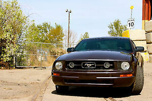 2007 Ford Mustang Pony edition Coupe (2 door)