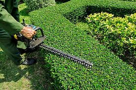 Gardening, grass and hedge cutting, powerwashing, gutter cleaning etc