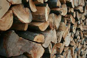FIREWOOD SPECIAL PRICES STARTING FROM $20