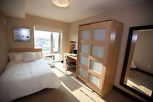 1 to 3 bedrooms available for winter sublet at Luxe 2