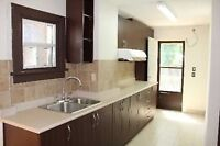 Step to Pape/Danforth Subway!! Reno 1bdroom Apartment for rent!!
