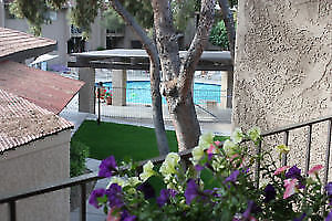 Downtown Scottsdale - enjoy all  Scottsdale has to offer