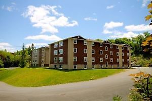 1 bedroom, all included, walking to UNB!
