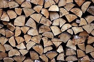 Firewood -50$ a cord (birch,cherry and soft wood also available