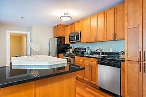 655 Princess St luxury apartment for rent (may - August)