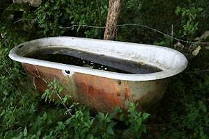Wanted- Old Bath tub suitable for Pets & Livestock water trough Jerrys Plains Singleton Area Preview