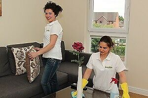 CLEANING SERVICES, DOMESTIC and OFFICES.