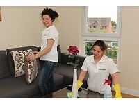 DOMESTIC ASSISTANCE INCLUDING CLEANING SERVICES