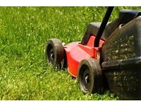 Gardener Ballymena Area - Grass Cutting, Hedge Trimming, Clearing & More