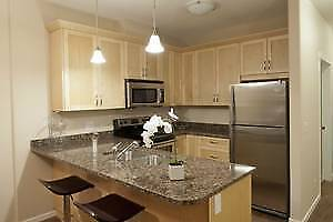 Beautiful 1 bed + den Unit - Available May 1