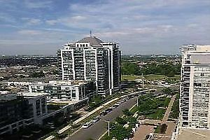 MODERN LUXURY 1 BEDROOM CONDO FOR RENT IN THORNHILL