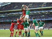 WALES v IRELAND - ***22-LINE PAIR OF TICKETS***