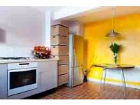 Lovely room in sunny, vegetarian house in Central Brighton location