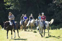 Trail rides at Black creek stables!