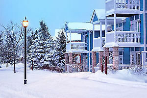 STAY at CARRIAGE HILLS RESORT & SKI at HORSESHOE for MARCH BREAK