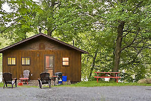 Labour Day Weekend Cottage Rentals - 5 AVAILABLE