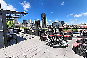 AMAZING DT VIEWS--FURNISHED 1BR CONDOS