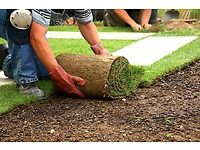 Freshly cut lawn turf supplied & delivered to your door