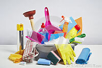 European cleaning lady here .. Experience and detailed cleaning